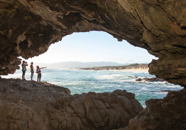 Grootbos Private Nature Reserve - den